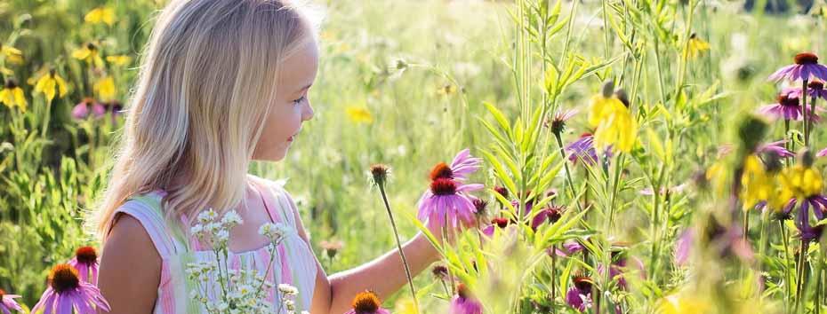 <blockquote><h3>In der Natur frei atmen können</h3>Im Alltag hecheln wird durchs stressige Leben und vergessen ein wichtiges Organ: Die Lunge. Wieder frei in der Natur atmen können, ohne Hilfsmittel, Cortison, Sauerstoff und Medikamente und ohne Atemtrainer…</blockquote>